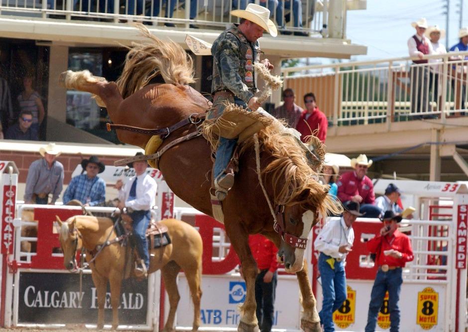 rodeo at calgary stampede