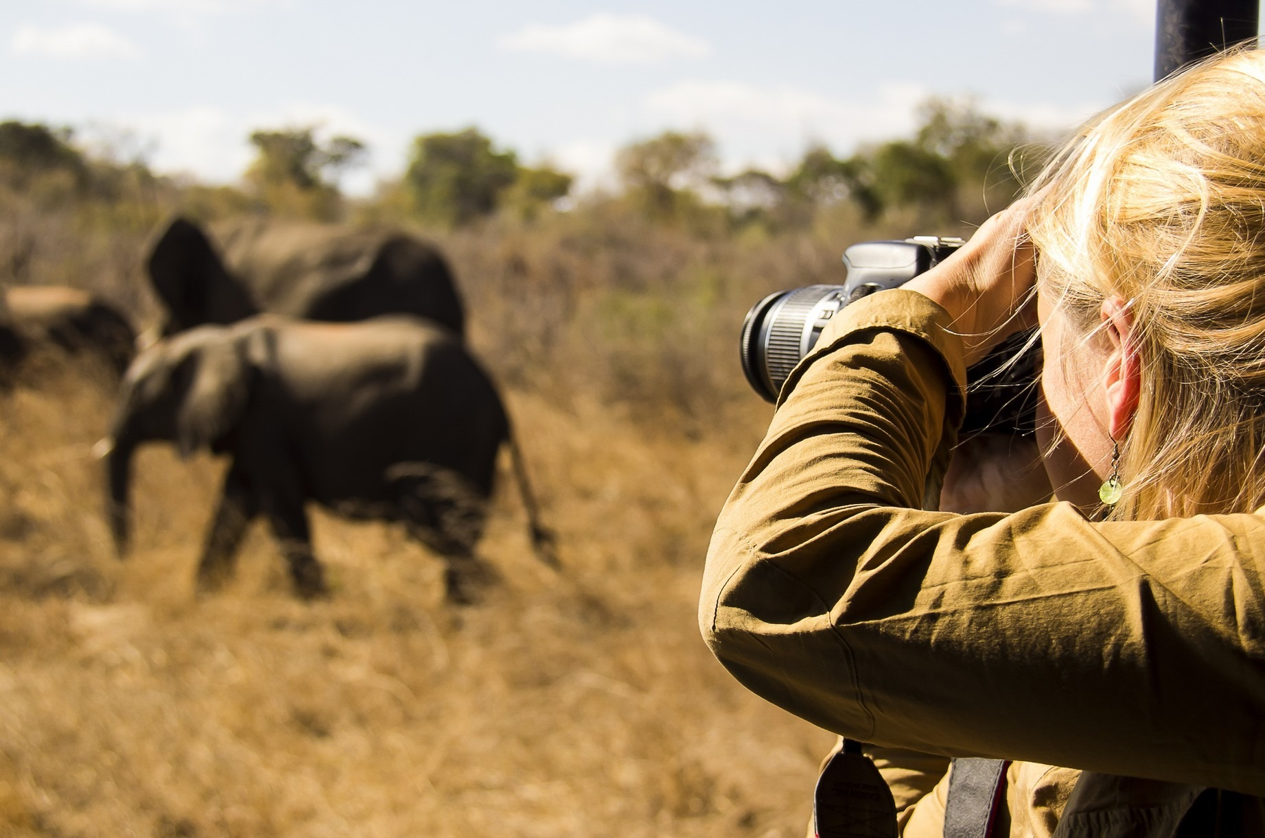 woman photographing elephant on Kenya Wildflife Photography Safari