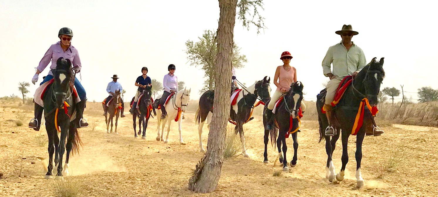Horseback riders at Desert Relief Riding Expedition