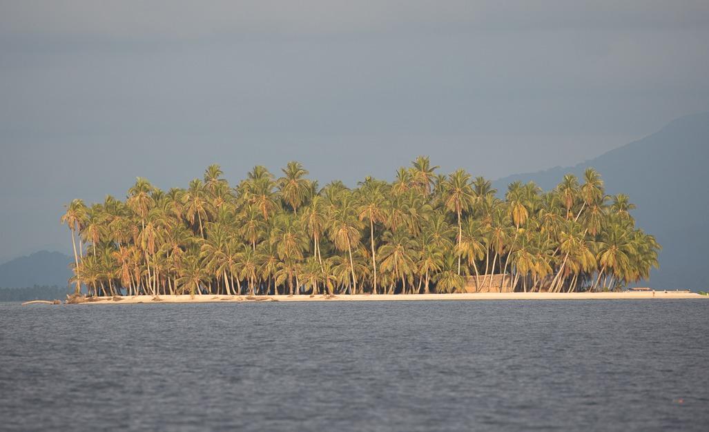 Thread Caravan Panama Island