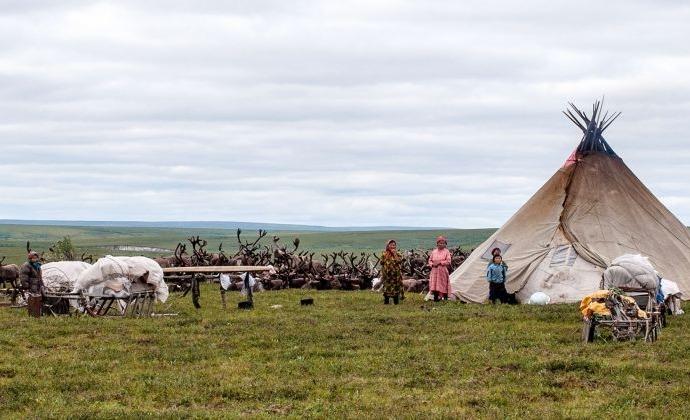 Campsite of indigenous reindeer herders