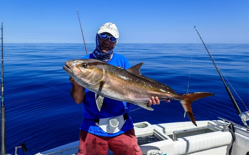 Hosted Big Game Fishing in Mexico