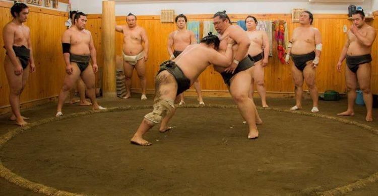 Sumo wrestling training ring