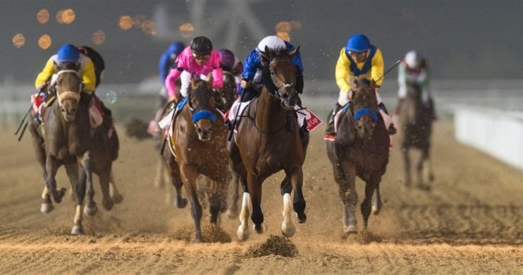 Horses on track at Dubai World Cup Horse Racing