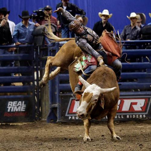 Professional Bull Riders Championships