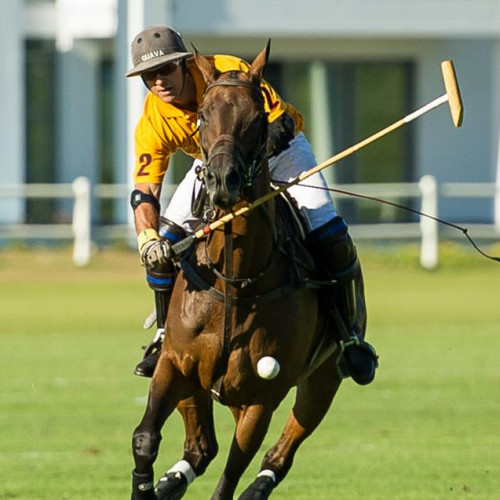 Veuve Clicquot Polo player on horseback