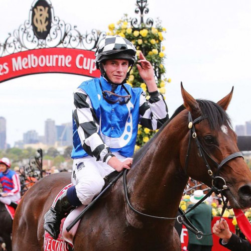 Jockey at the Melbourne Cup