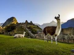 Luxury Galagos and Machu Picchu Tours