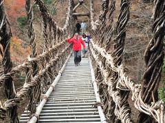 okuiya vine bridge kazurabashi on a Mountain Temple Pilgrimage