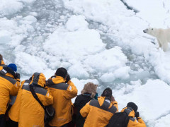 Cruise passengers watching polar bears on North Pole Expedition
