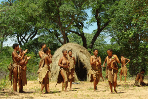 Namibia Culture and Wildlife Adventure