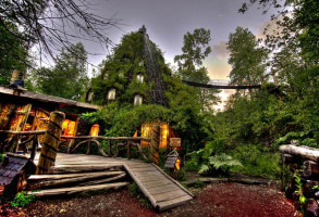 magic mountain lodge - cone shaped and covered in forest greenery