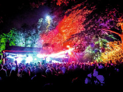 view of multi coloured lights on the trees, stage and crowd at Kelburn Garden Party