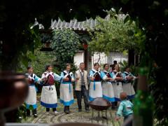 Gastronomic Tour of China