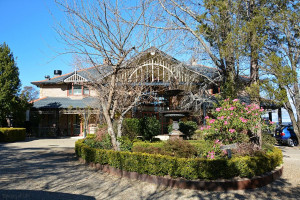 Echo Hotel entrance surrounded by flowers and trees in the Katoomba Blue Mountains
