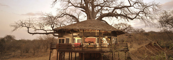 treehouse in Tanzania at African safari reserve