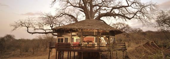 treehouse in Tanzania at African safari reserve
