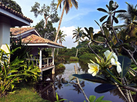 tropical forest, flowers and water surrounding balcony of soul and surf yoga retreat