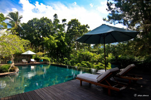 swimming pool and sun loungers surrounded by luscious forest at The Farm at San Benito