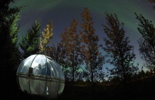 Lit up Buubble hotel room in the forest at night surrounded by trees, Iceland