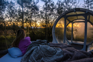 women in outdoor bed next to bubble room in the forest with sunset at Buubble hotel, Iceland